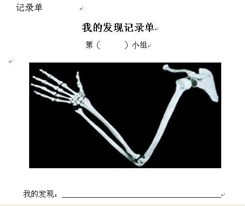 肘部骨骼结构图